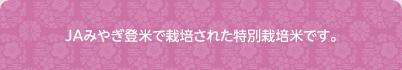 JAみやぎ登米で栽培された特別栽培米です。